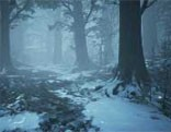 FUN Christmas Winter Forest Escape