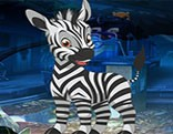 G4K Pet Zebra Escape