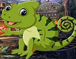 G4K Harmless Chameleon Escape