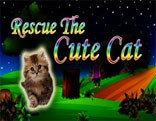 Rescue The Cute Cat