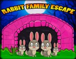 G2J Cute Rabbit Family Escape
