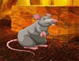 Wow Feed The Hungry Rat HTML5
