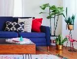 GFG Colorful Living Room Escape