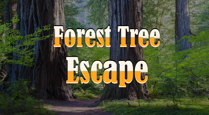 GFG Forest Tree Escape