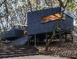 GFG Architecture Forest House Rescue