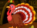 G4E Turkey Lover House Escape